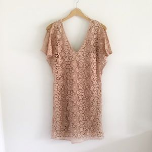 Zara Blush Split Sleeve Lace Shift Dress NWT